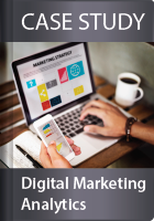 Bizintel360 Digital Marketing Analytics