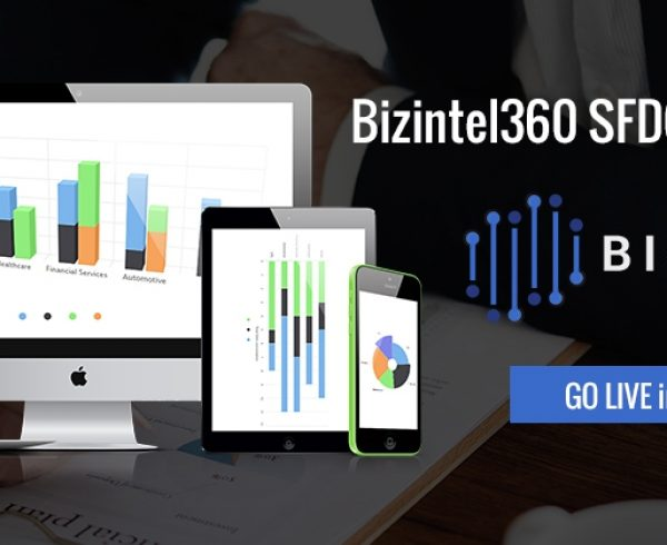 Salesforce analytics with BizIntel360